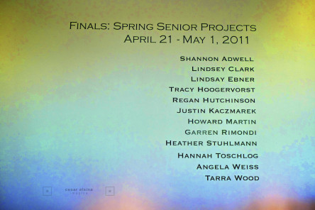 The 2011 Seniors Projects Show