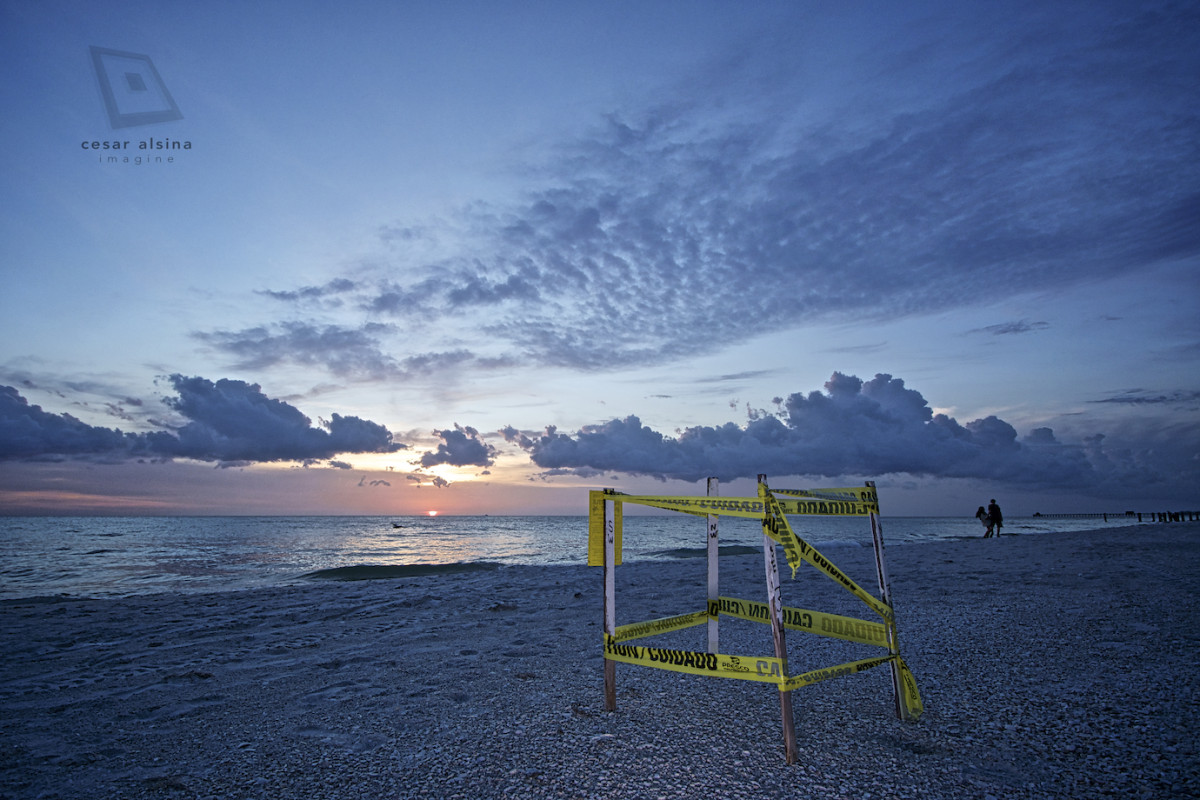 Protected Turtle Eggs at Sunset in Naples Beach